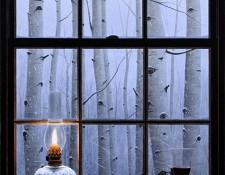 Alexander Volkov Art - Aspen Window