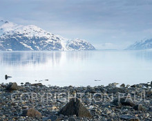Jon Paul Photography - Glacier Bay from Reid Inlet