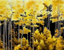 Alexander Volkov Photorealism - Aspen Light