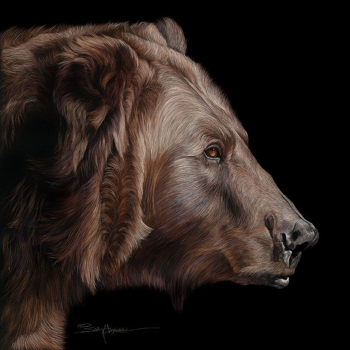 Sally Maxwell - Profile of a Grizzly