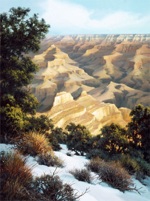 Mather Point Winter